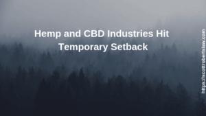 Hemp and CBD Industries