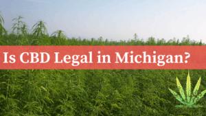 Is CBD Legal in Michigan