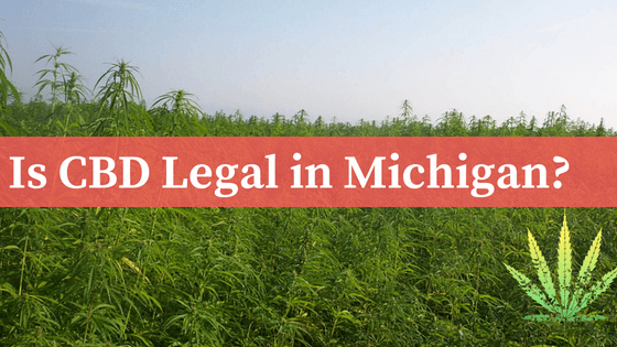 Is CBD Legal in Michigan