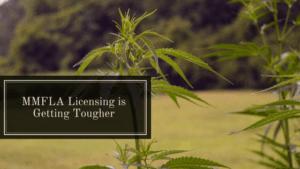 michigan state medical license