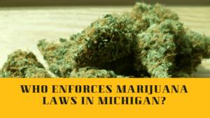 marihuana would be legal in Michigan