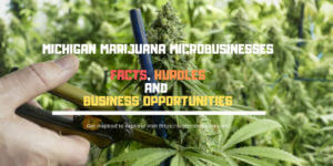Michigan the next state to decriminalize the sale and use of marijuana for adults