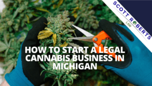 Legal Cannabis Business